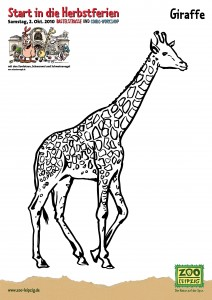 Schweinevogel ZOO Leipzig Giraffe