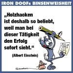 id-binse3a-18012013