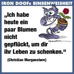 id-binse4a-10032013